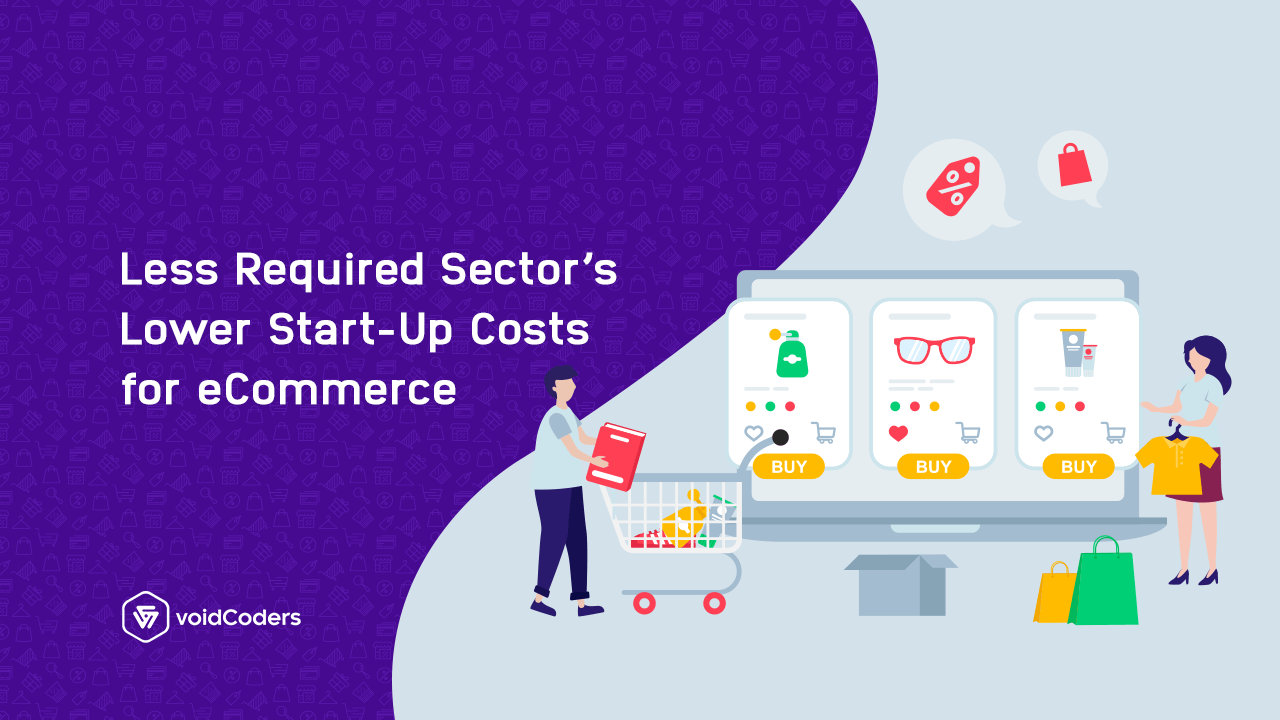 eCommerce Less Required Sector's Lower Start-up Costs - Void Coders